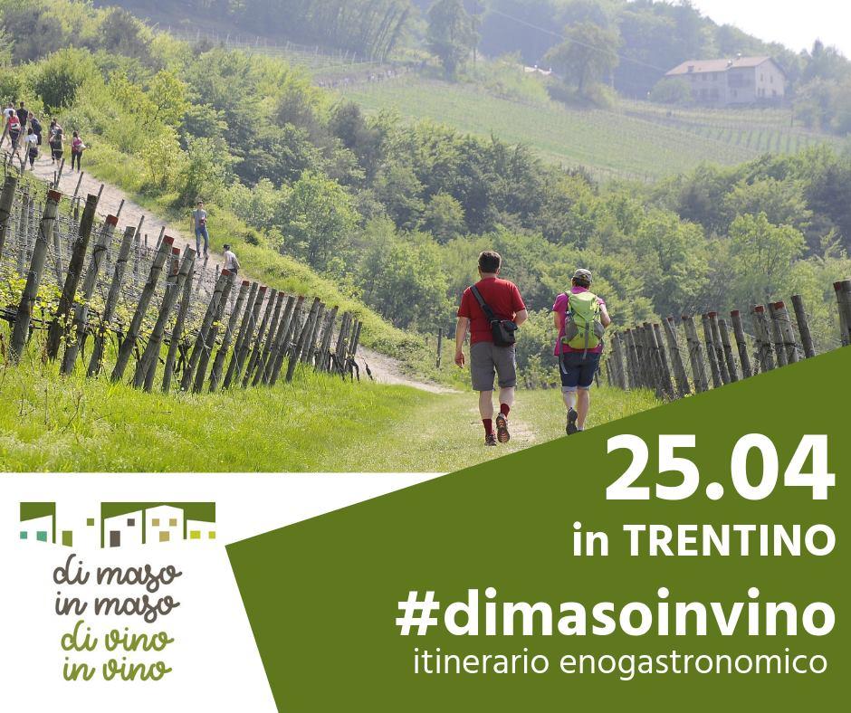 Di Maso in Maso - Intuito Marketing - Consulenza Marketing - Trentino e Cortina d'Ampezzo